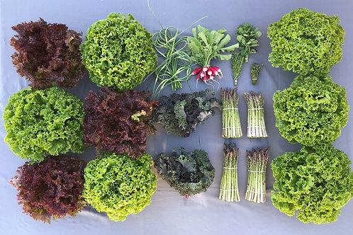 Seasonal Harvest Box # 4 - $50