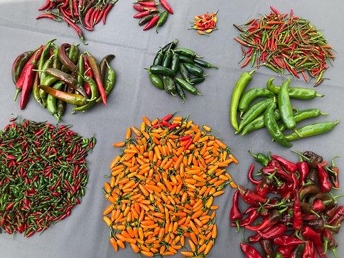 Bulk Hot Peppers