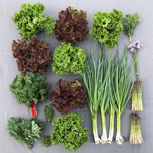 Seasonal Harvest Box # 2 - $50