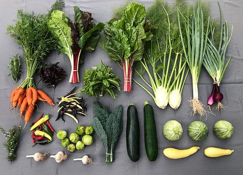 Seasonal Harvest Box - #7