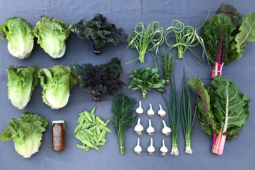 Seasonal Harvest Box # 7 - $50