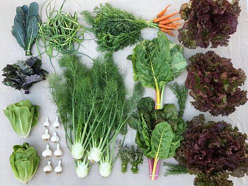Seasonal Harvest Box - #4