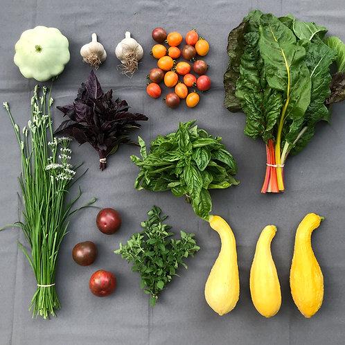 Mini Harvest Box - #9