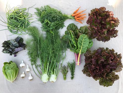 Mini Harvest Box - #4