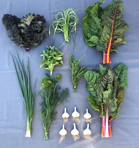 Seasonal Harvest Box # 8 - $20