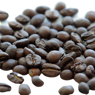 Coffee%20Beans_edited.png