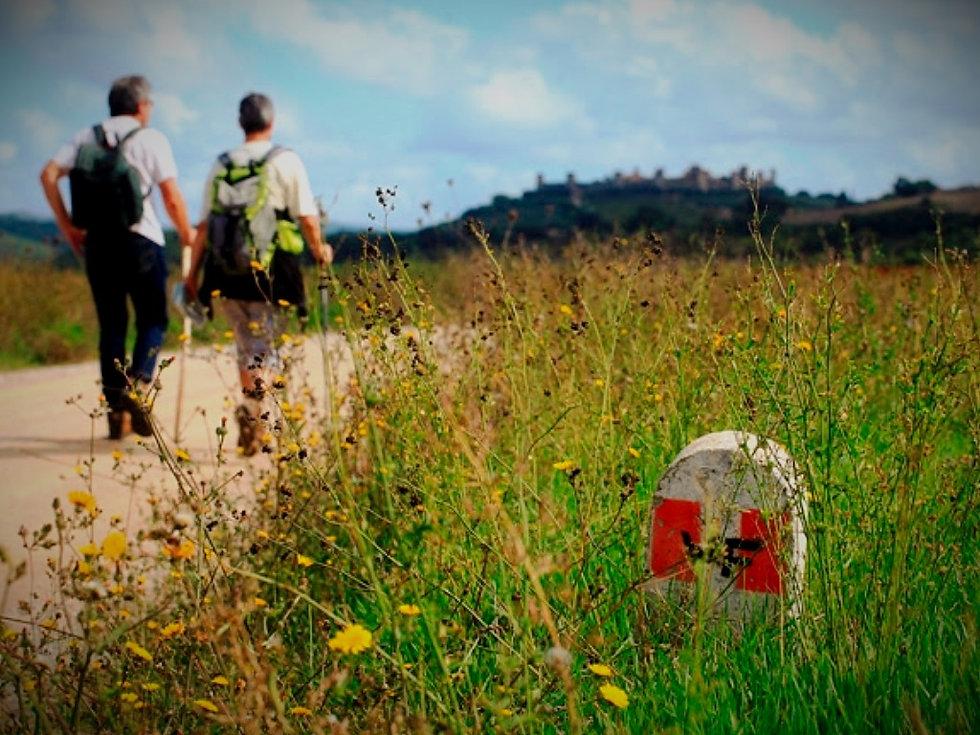hiking_via_francigena_toscana_edited.jpg