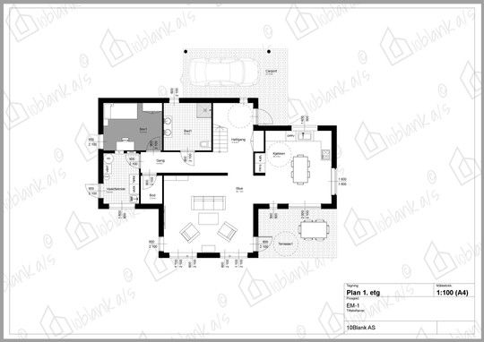 Plan 1etg EM-1.jpg