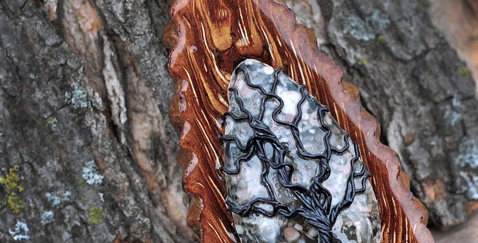 N897 Turritella Agate