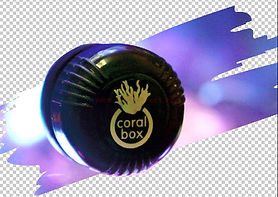 Coral Box magnet cleaner