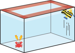 How to stop fish from jumping out