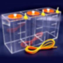Coral Box balling tank