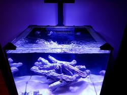 Rimless aquarium cover