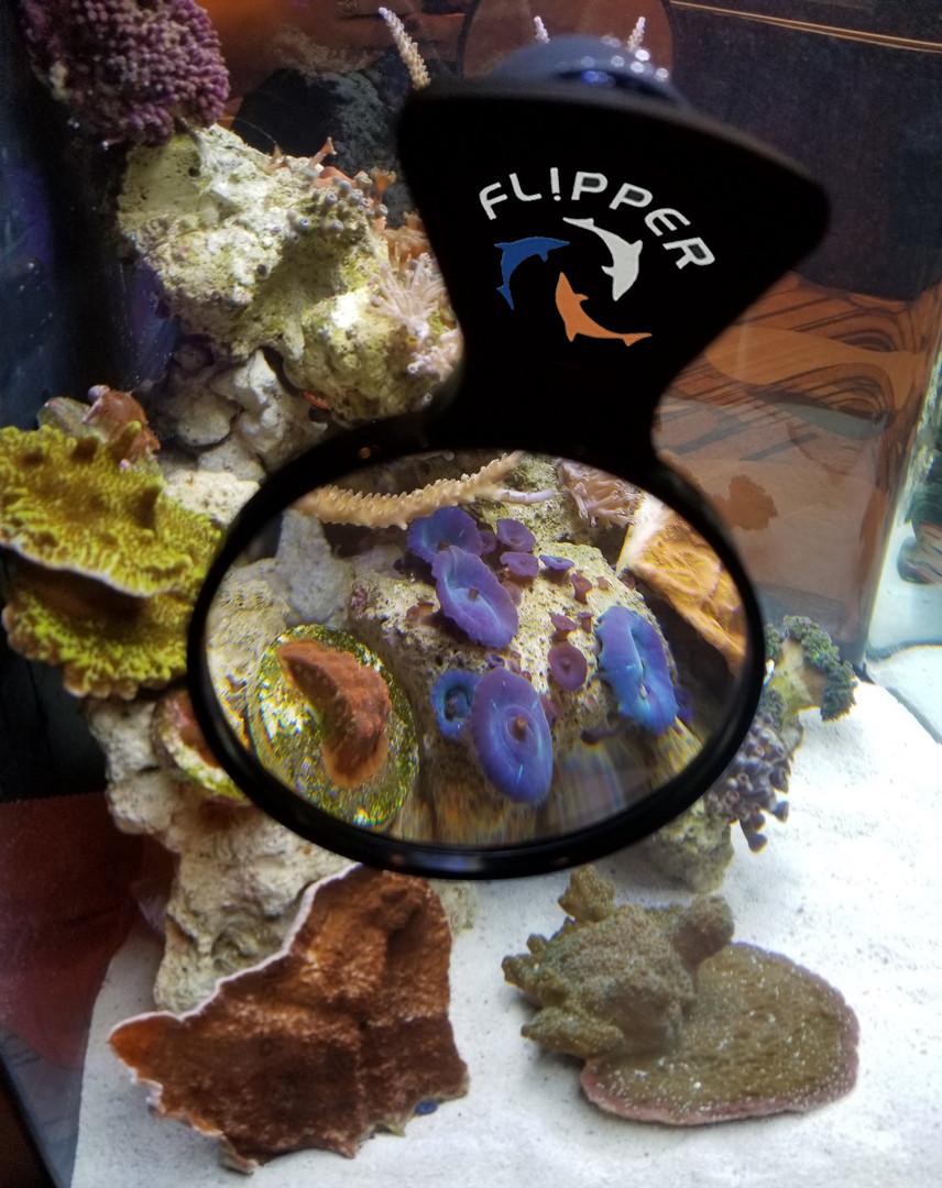 Flipper Aquarium Maginfier