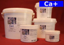 Ca-template-2-e1470155550163.jpg