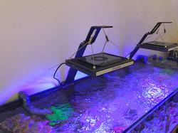 Aquarium light support