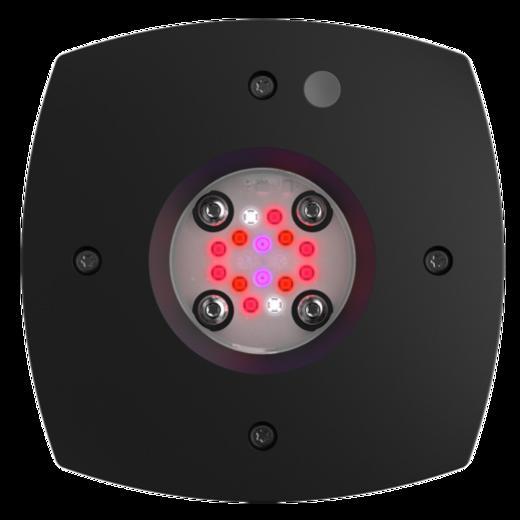 primeFuge_16_bottom-uai-516x516.png