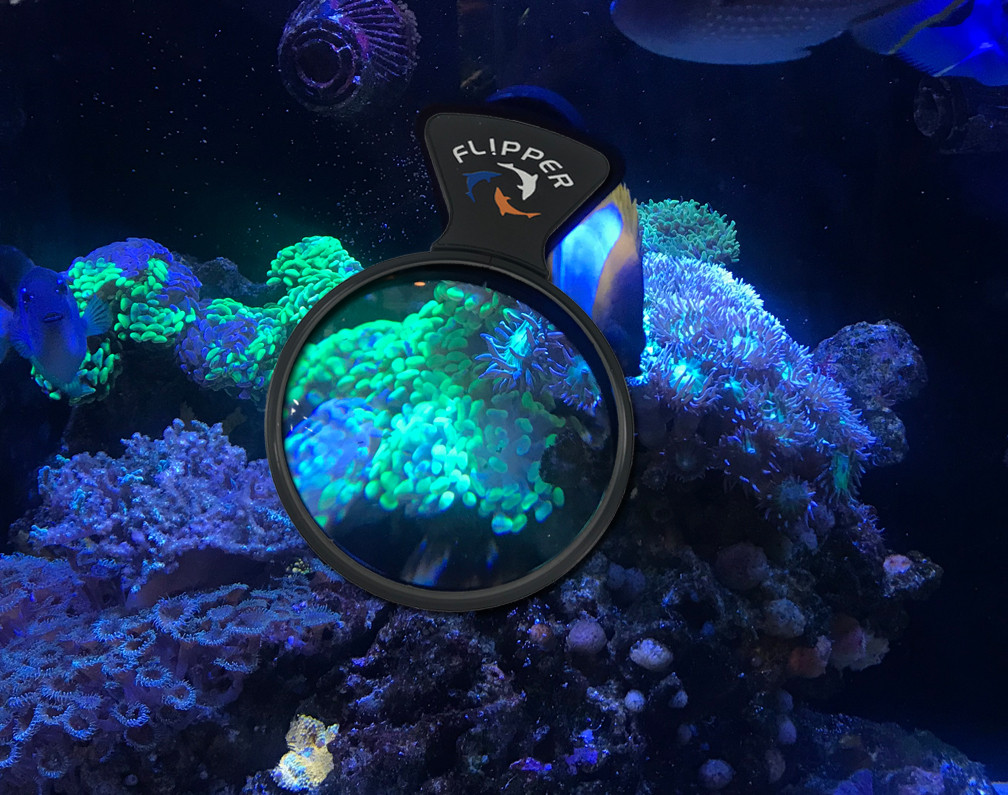 NEW HANDLE - On Tank MAGNIFIED