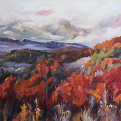 """North Georgia Mountains"""