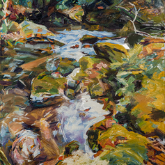 """Brasstown Creek"""
