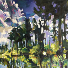 """Nighttime on the Okefenokee"""