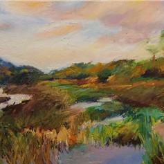 """""""Skidaway Marsh, Savannah"""""""