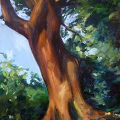 """The Goddess Tree"""