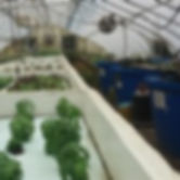 greenhouse-polyculture-system-image-200x