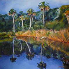 """""""Beach Hammock, Little Tybee Island"""""""