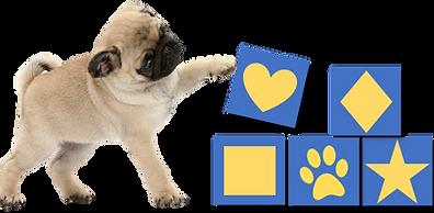 Puppy Building Blocks logo.png