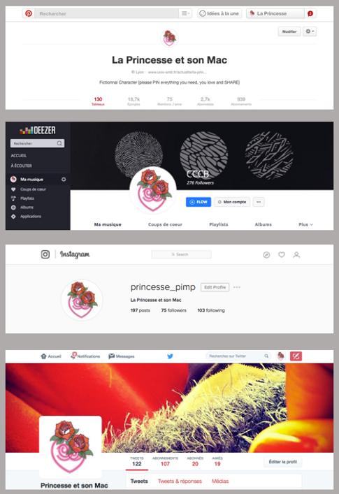 ProfilPM_resosoc_fondgris.png