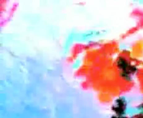 Capture+d'écran+2011-02-24+à+13.09.05.pn