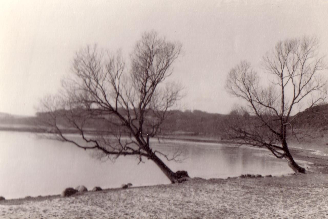 Høllet_1950