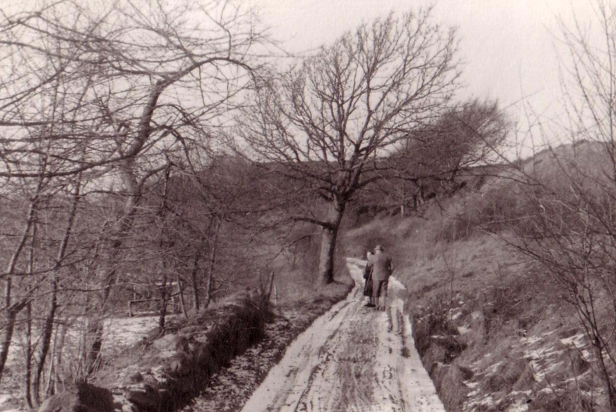 Langs_Høllet_1953