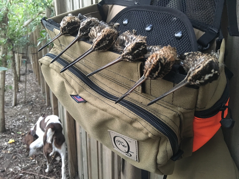 Q5 Outdoors Rimfire with a brace of Snipe