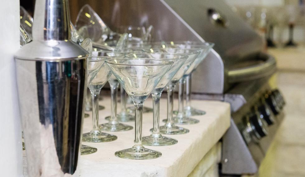 20180217-MartiniParty-PatronsBellaireParks-013-web.jpg