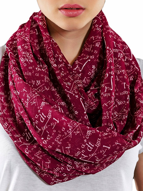 Claret Red Mathematics Infinity Scarf Teacher Gift For Her Girlfriend Birthday
