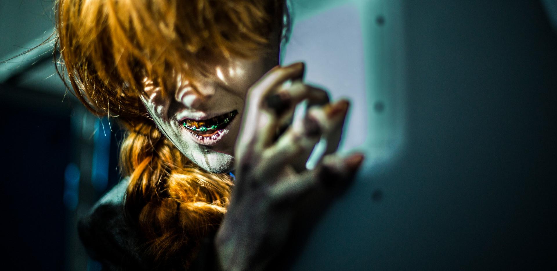 `Shelley prowl.jpg