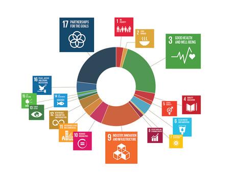 Embedding SDGs in your organization: an impact strategy - EMMA VERHEIJKE (Sinzer, Our Partners)