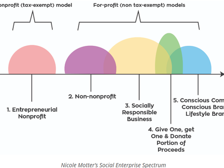 THERE ARE ACTUALLY 6+ TYPES OF SOCIAL ENTERPRISE - NICOLE MOTTER