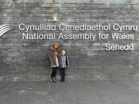 A visit to Senedd - National Assembly for Wales