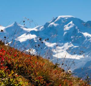View of Grand Combin glacier in Verbier