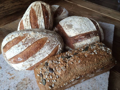 Sourdough Bread Selection