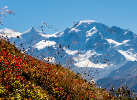 Mountain Bike holidays in Switzerland