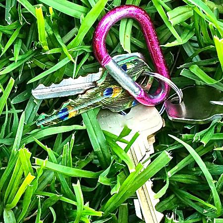 Lost Keys