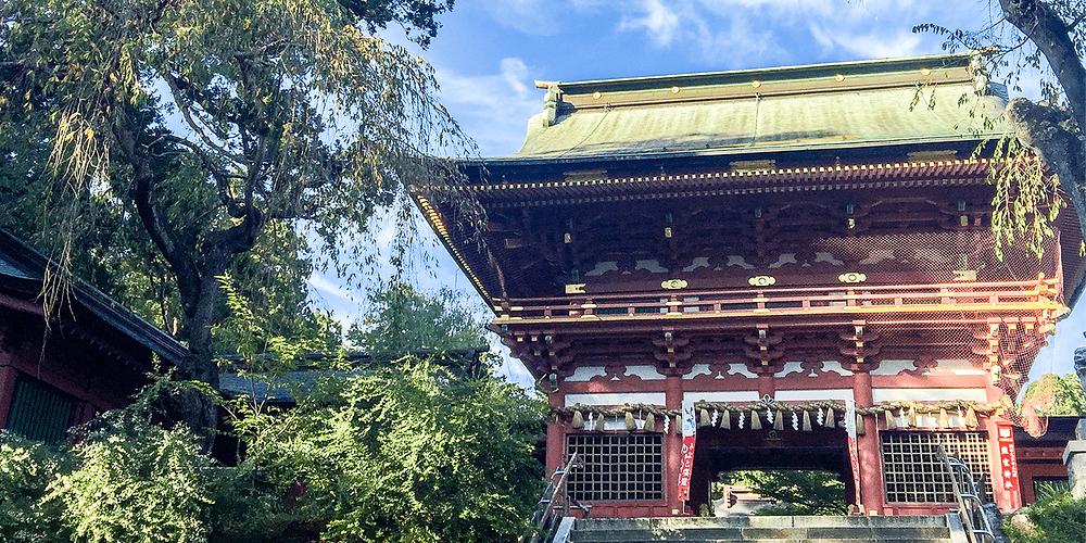 一般社団法人日本塩分管理支援協会を設立 | 一般社団法人日本塩分管理支援協会
