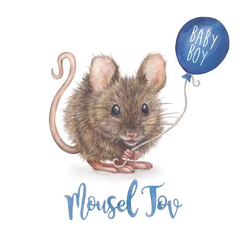 T32 - Mousel Tov - Boy