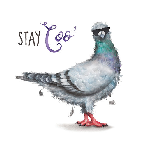 C60 - Stay Coo