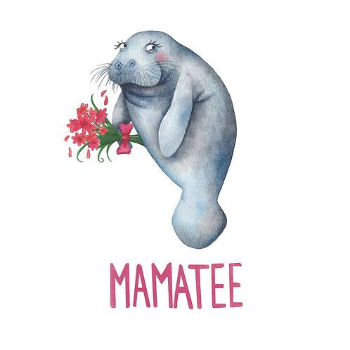 C77 - Mamatee