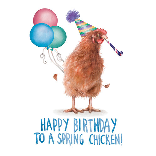 C63 - Spring Chicken
